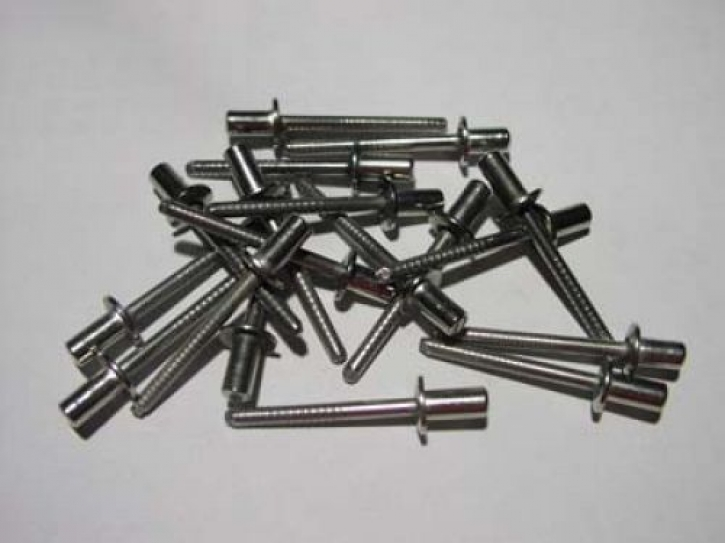 muffler rivet silver
