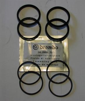 Brembo P4 30/34 Guß / cnc Reparatur Satz Dichtungen