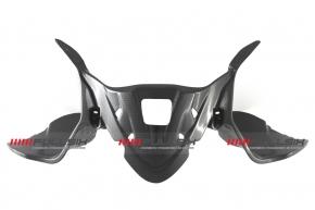 Carbon Hinterradabdeckung OEM für Ducati Panigale 899