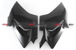 Carbon Verkleidungsseitenteile Race für Ducati Panigale V4